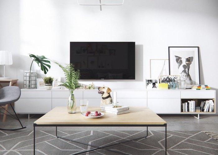 Meuble Tv Pour Salon Scandinave