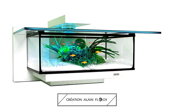 Table basse aquarium vendre